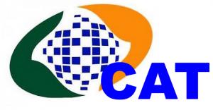 Logo marca do INSS com o indicativo da CAT